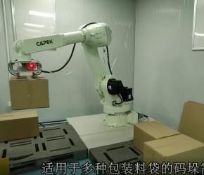 自动化码垛机器人码垛机器人 佛山非标自动化设备