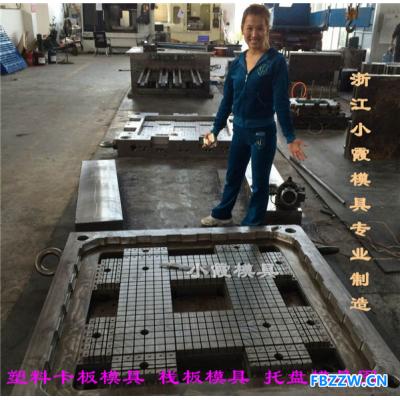 中国注射模具双面网格注射平板模具设计加工垃圾桶模具2019
