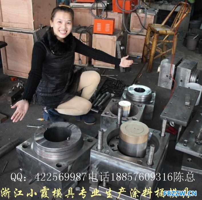 定做涂料桶模具电话18857609316 (1)